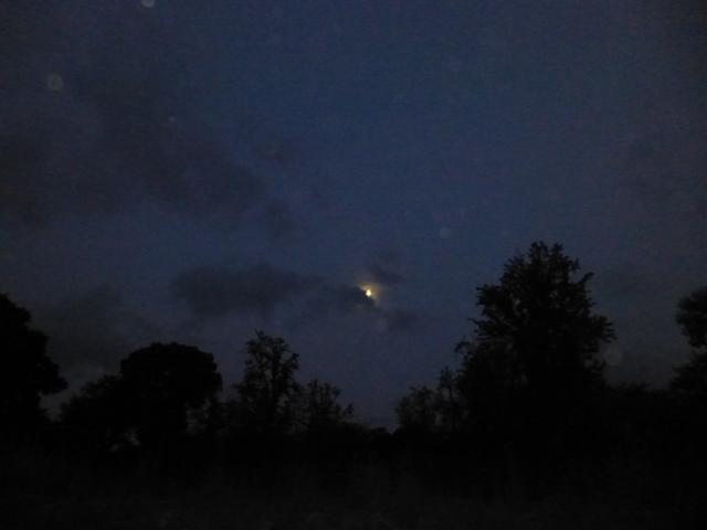 141203_evening_P1010063_25_orbs